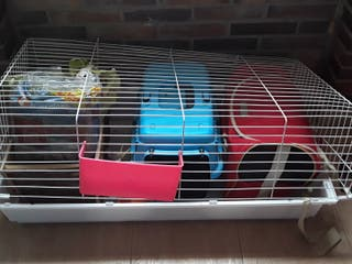 Jaula conejo+ transportín+ cabaña