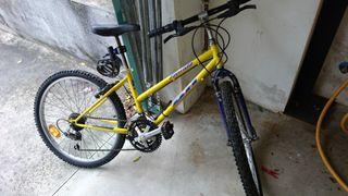 bicicleta bh florida