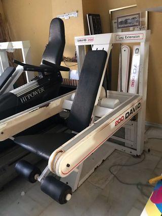 Gimnasio completo máquinas gym gim