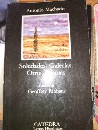 soledades galerías otros poemas
