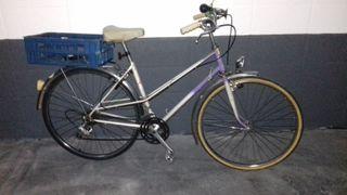 Bicicleta de paseo. Clásica
