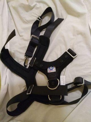 Arnés y cinturón de seguridad para perros