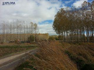 Terreno en camino bajo de San Blas (Teruel)