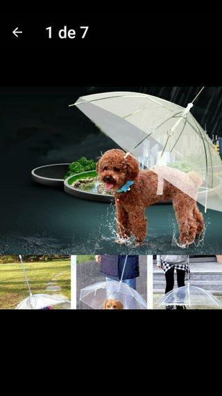 paraigues per a gossos dies pluja, pets