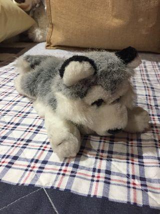 Peluche perro pequeño