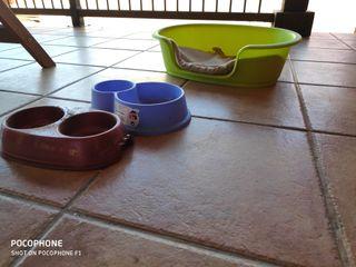 cama+comederos+arenero+medio saco de arena gatos