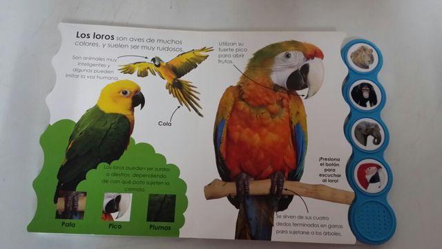 Libro interactivo: En el zoo (botones divertidos)