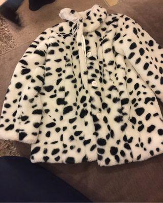 Age 8 Dalmatian spot coat