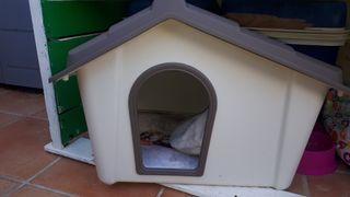 casita Con alfombra calentita