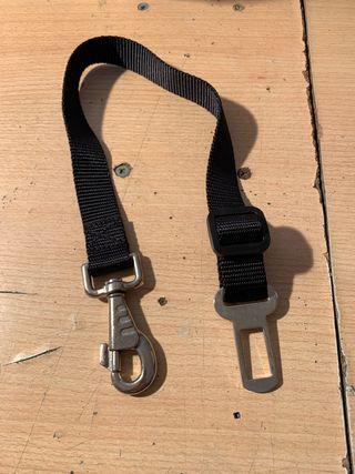 Cinturón para perros