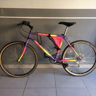 Bicicleta de montaña Mendiz