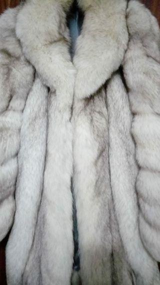 Abrigo de zorro azul