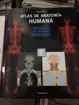 Libro Atlas de anatomia humana Konemann