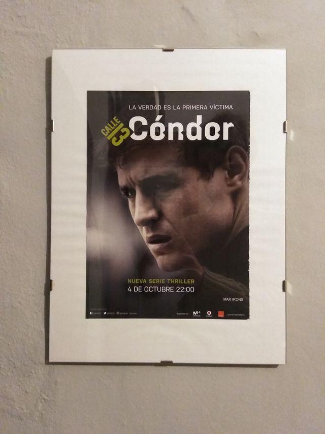 Cuadro Cóndor