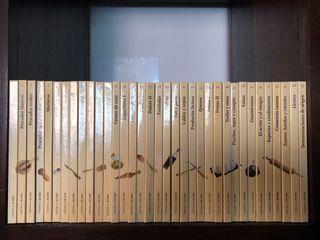 Colección completa Libros Cocina