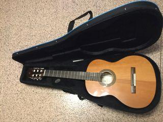 Guitarra y funda de guitarra