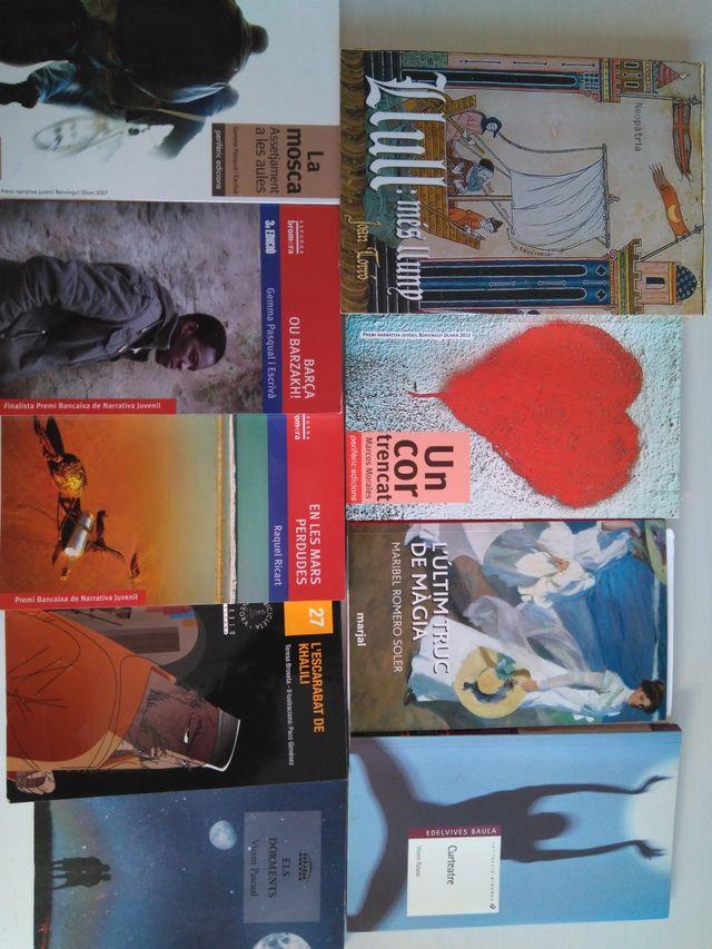 libros de lectura en Valenciano