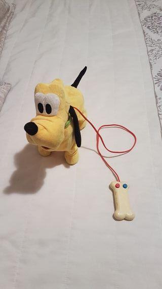 Pluto paseo