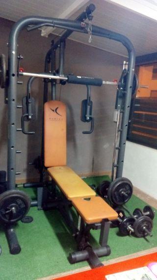 banco de pesas bm900