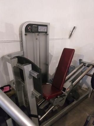 prensa vertical life fitness pro 2
