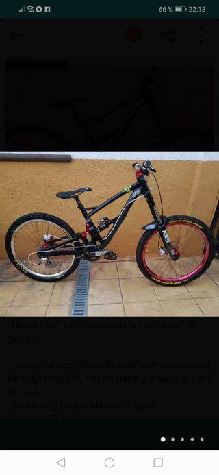 Bicicleta de descenso El Gallo
