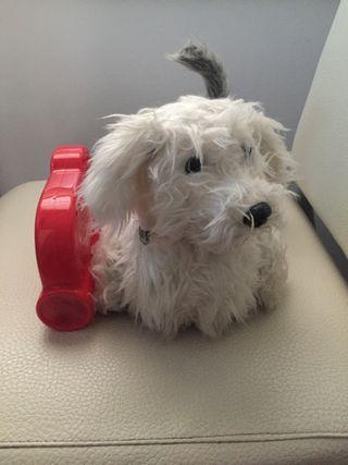 Chersy, perro juguete