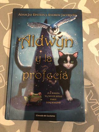 Aldwyn y la profecía.