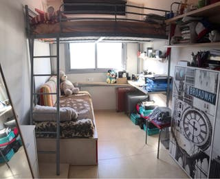 Cama litera, con colchones, escritorio y estantes