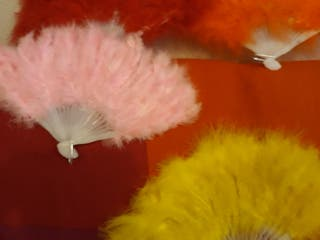 abanicos colores