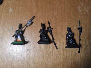 guardia del fenix warhammer