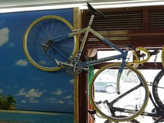 bicicleta carretera equipo Olmo Italia