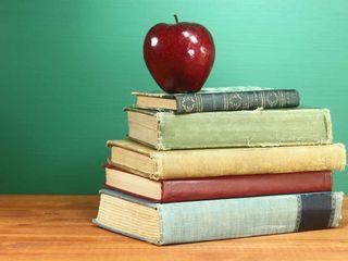 Clases particulares de apoyo para primaria y ESO