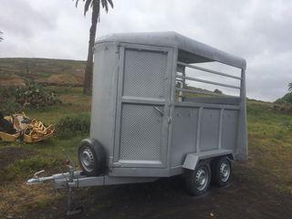Remolque vans para animales