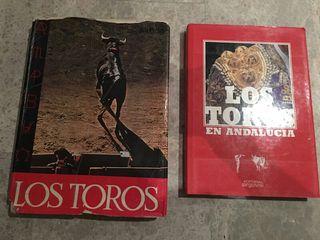 Lote libros toros