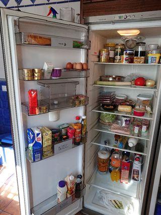 frigorífico + congelador
