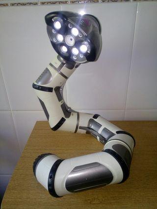 Robot roboboa