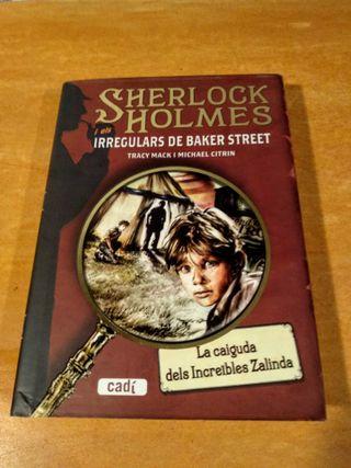 Llibre: Sherlock Holmes i els irregulars de Baker