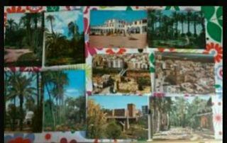 Postales antiguas de Elche