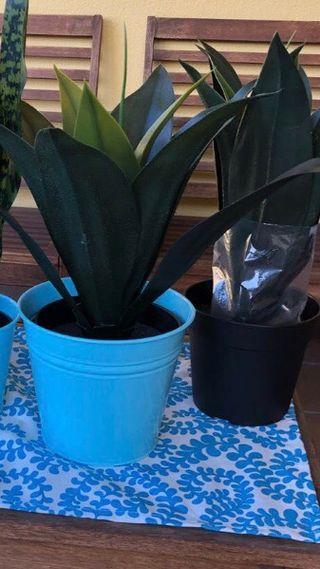 Plantas artificiales A ESTRENAR