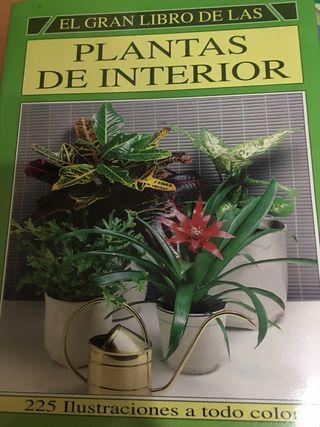 El gran libro de plantas de interior