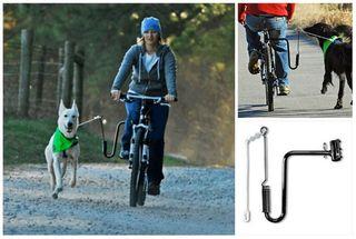 Soporte Bici para perros