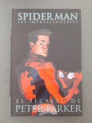 Spiderman Secreto Peter Parker