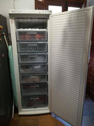 Congelador Balay