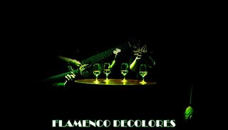 Grupo Flamenco Decolores