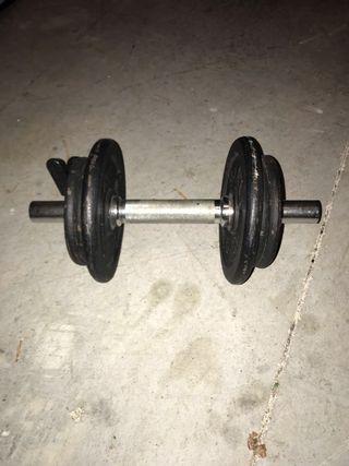 Peso de gimnasia