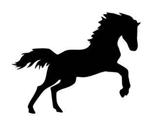 VINILOS ADHESIVOS caballos