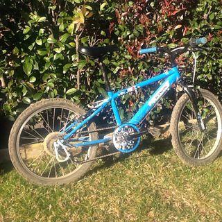 "Bicicleta btt niño niña 20"""