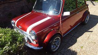Mini Mini (old Model) 1993