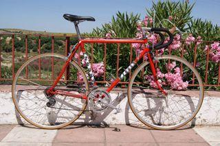 Bicicleta vintage, clásica Zeus
