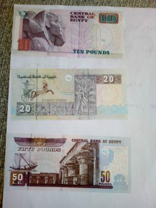 lote de billetes de Egipto